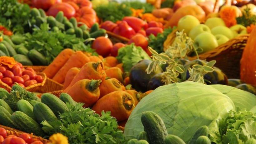 Более 1,2 тонны овощей и фруктов реализовали на ярмарке «Ценопад» в Солнечногорске