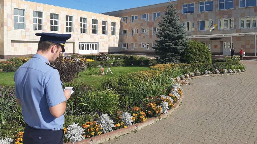 Более 200 нарушений чистоты и порядка устранили на территориях школ Подмосковья