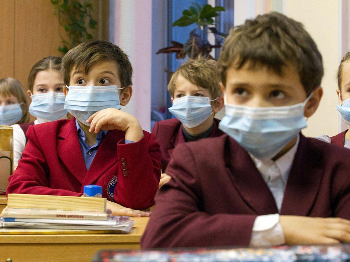 Будут ли линейки 1 сентября 2020 в школах узнали СМИ