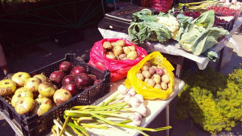 Дачникам предлагают продавать выращенные овощи и фрукты на рынках Подмосковья