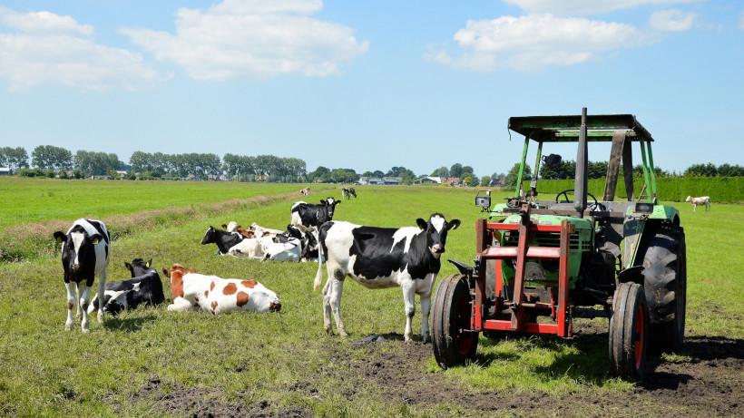 Фермеры из Московской области рассказали, как начали свое дело