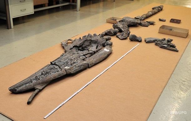 Китайские ученые обнаружили останки одного динозавра внутри другого