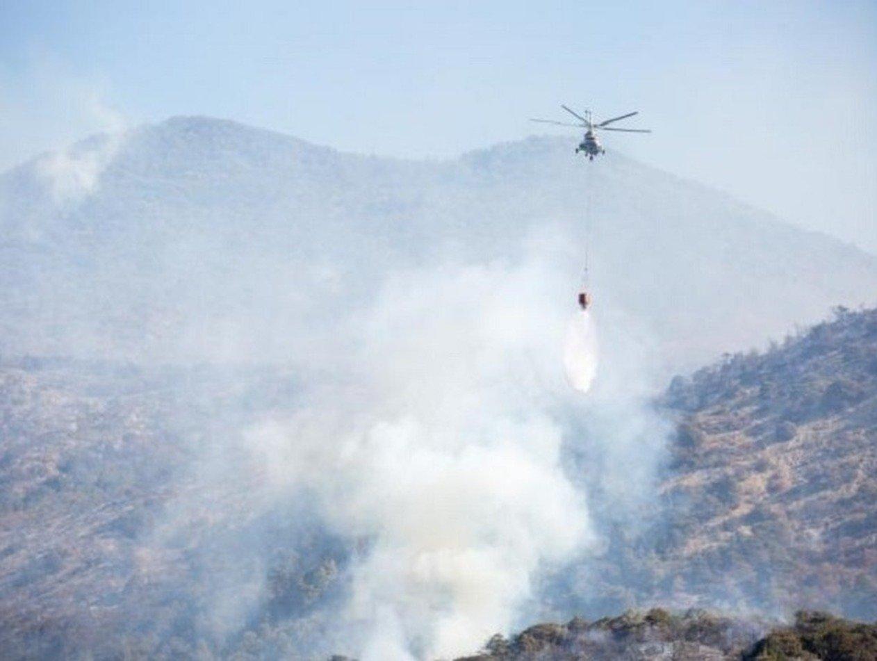 Лесные пожары под Анапой: пламя на 130 гектарах, эвакуированы тысячи туристов