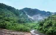 Названа причина тропической экспансии на Земле