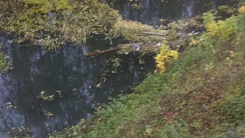 Река Чаченка в Одинцовском районе