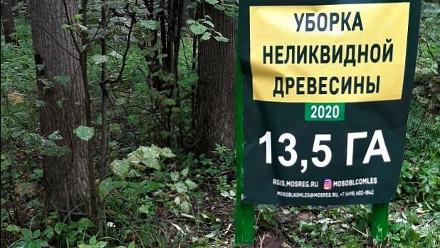 Уборку неликвидной древесины завершили в Орехово-Зуевском и Виноградовском лесничествах