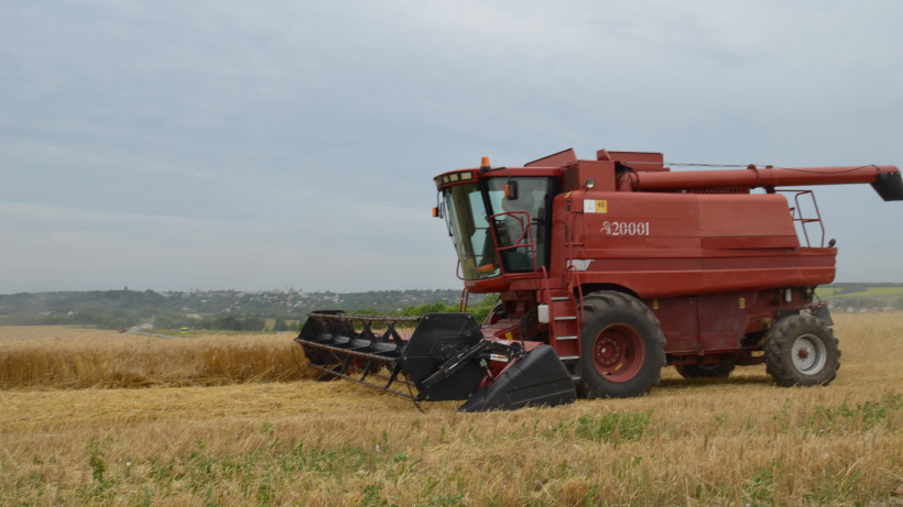 Урожай зерна в Подмосковье увеличился на 158% в 2020 году