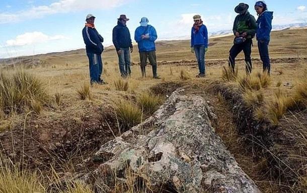 В Перу найдено дерево возрастом 10 млн лет