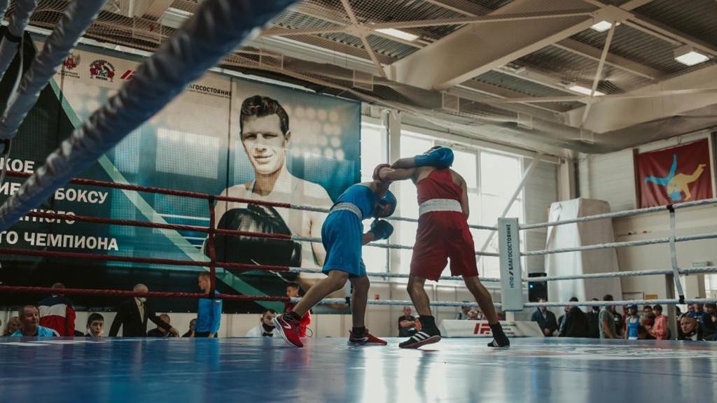 Боксеры из Подмосковья завоевали 11 медалей соревнований на призы Бориса Лагутина
