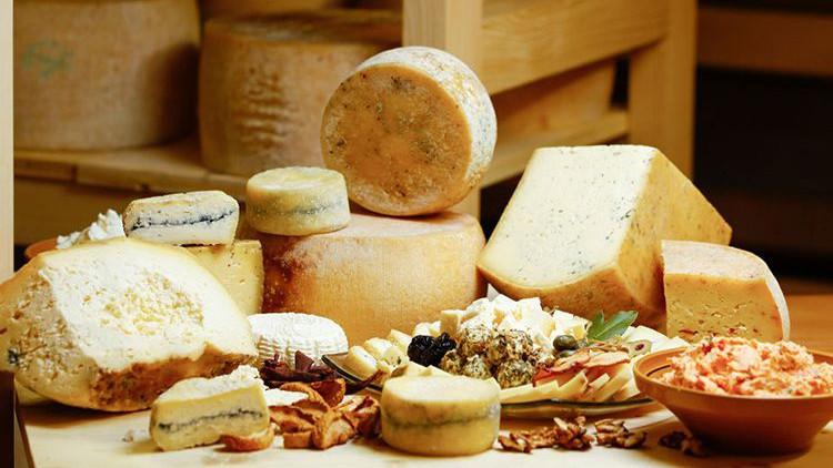 Более 150 видов сыра представят производители на фестивале в Щелкове