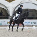 Фестиваль конного спорта для людей с ограниченными возможностями «Золотая осень» пройдет в Котельниках