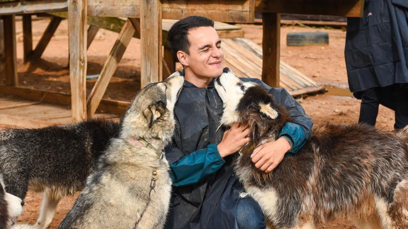 «Купание в собаках»: подкаст «Путь-дорога» рассказывает о хаски-деревне в Подмосковье