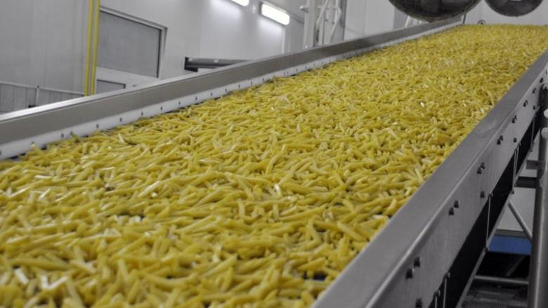 Московская область лидирует в РФ по переработке картофеля за первое полугодие