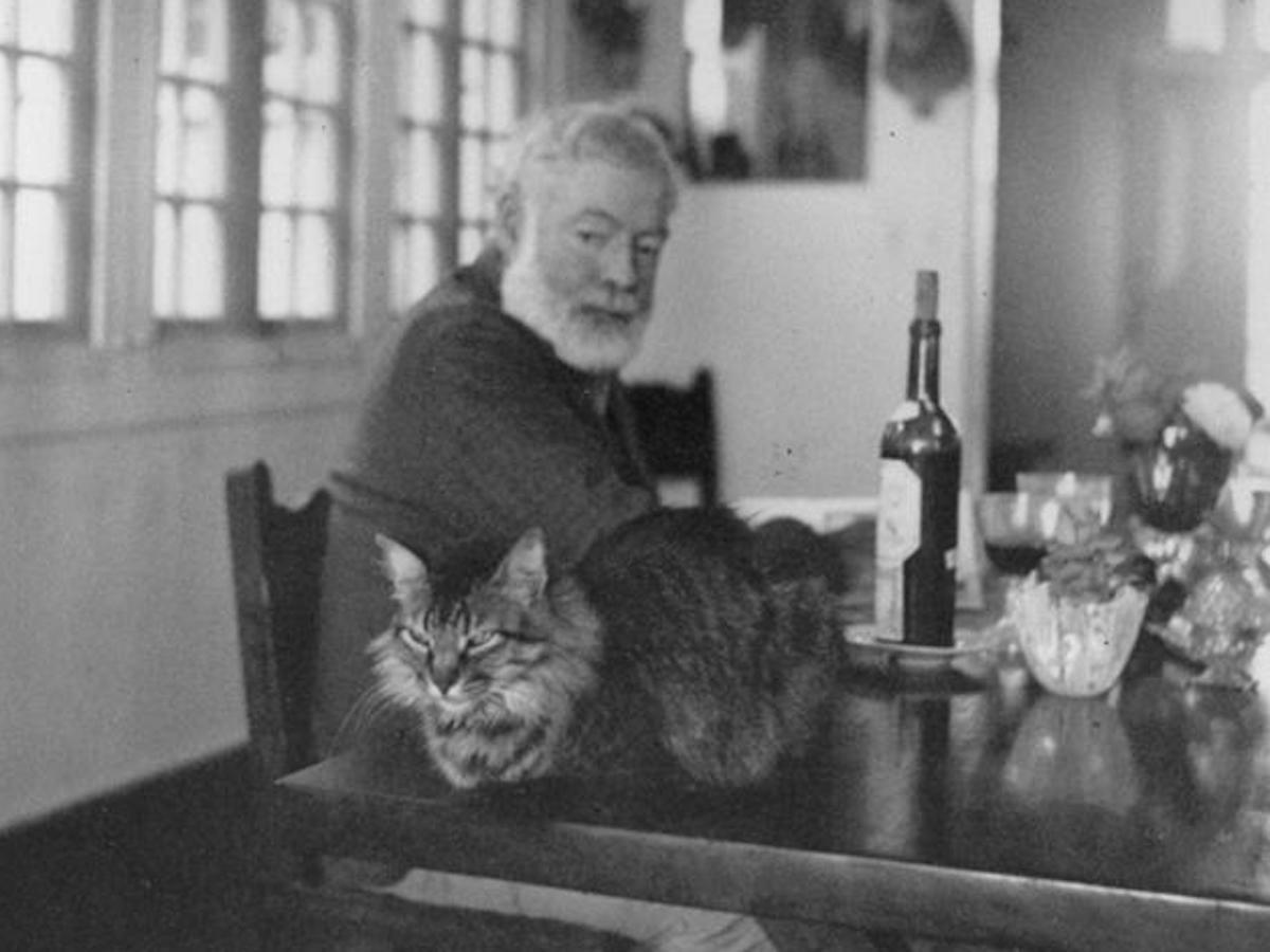 Необычные домашние животные знаменитых писателей и художников