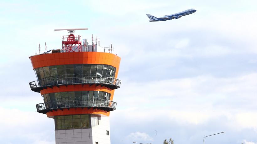 Орнитологи не видят опасности для самолетов из-за скопления птиц в Лобне