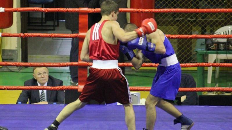 Подмосковная команда победила во Всероссийских соревнованиях по боксу имени Иосифа Кобзона