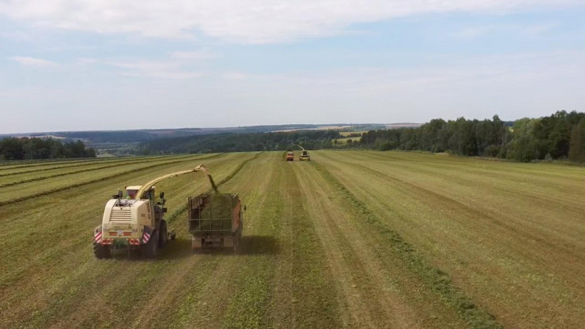Уборку кормов планируют завершить в Московской области в ноябре