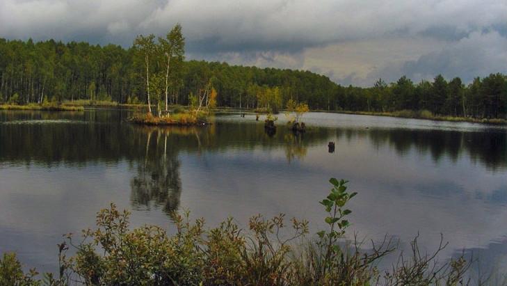 Власти Подмосковья утвердили границы трех заповедников в Сергиево-Посадском округе