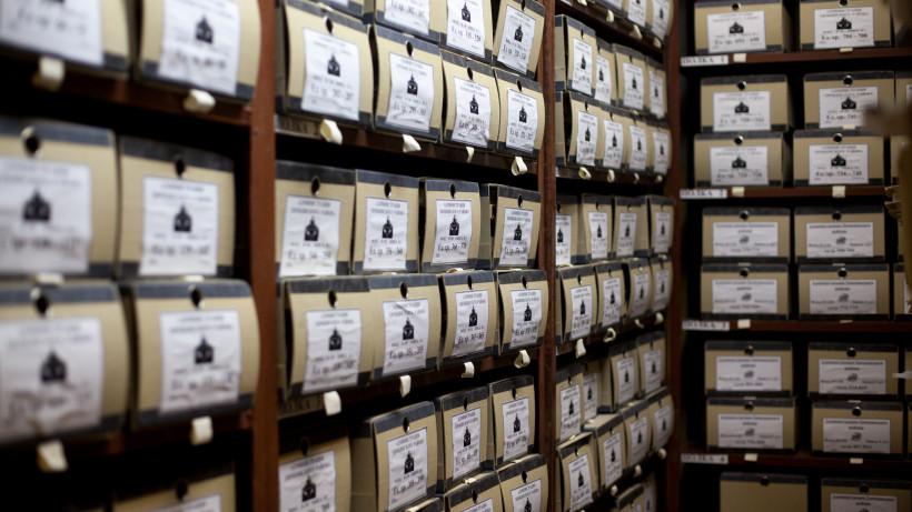 Выставка архивных документов «Без срока давности» открылась в музее «Зоя» в Рузском округе