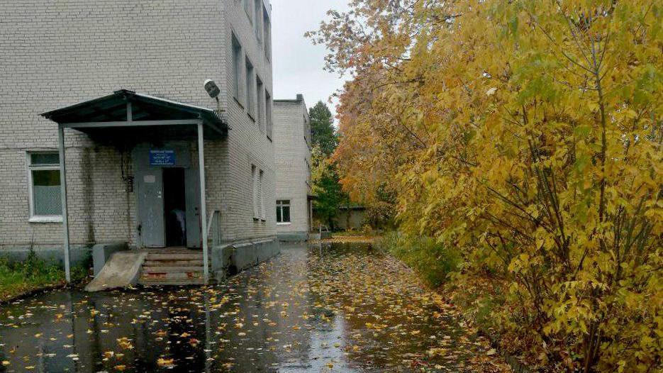 Асфальтное покрытие заменили на территорий 32 медучреждений в Подмосковье