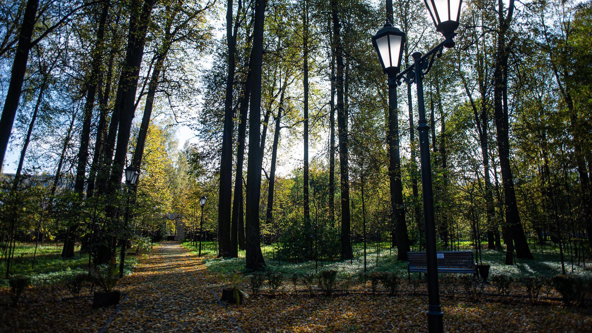 Благоустройство экомаршрута «Пушкинская тропа» завершили в Подмосковье