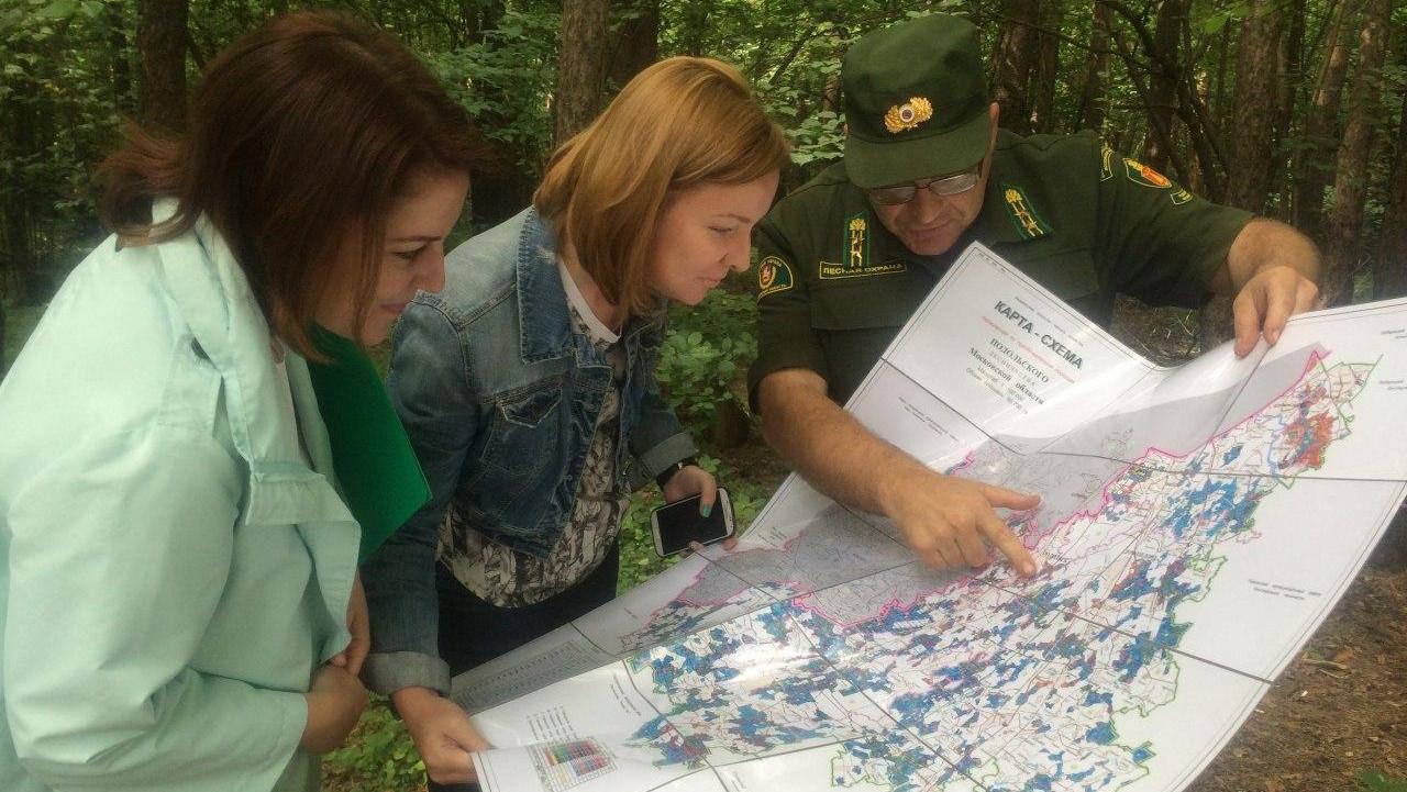 Комитет лесного хозяйства Московской области поздравил волонтеров с праздником