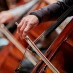 Музыкальные коллективы и филармонии подготовили к Международному дню музыки специальные концертные программы