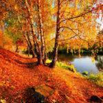 «Народные приметы» Октябрь