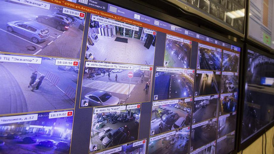 Совершивших 14 краж в магазинах бытовой техники правонарушителей задержали в Подмосковье
