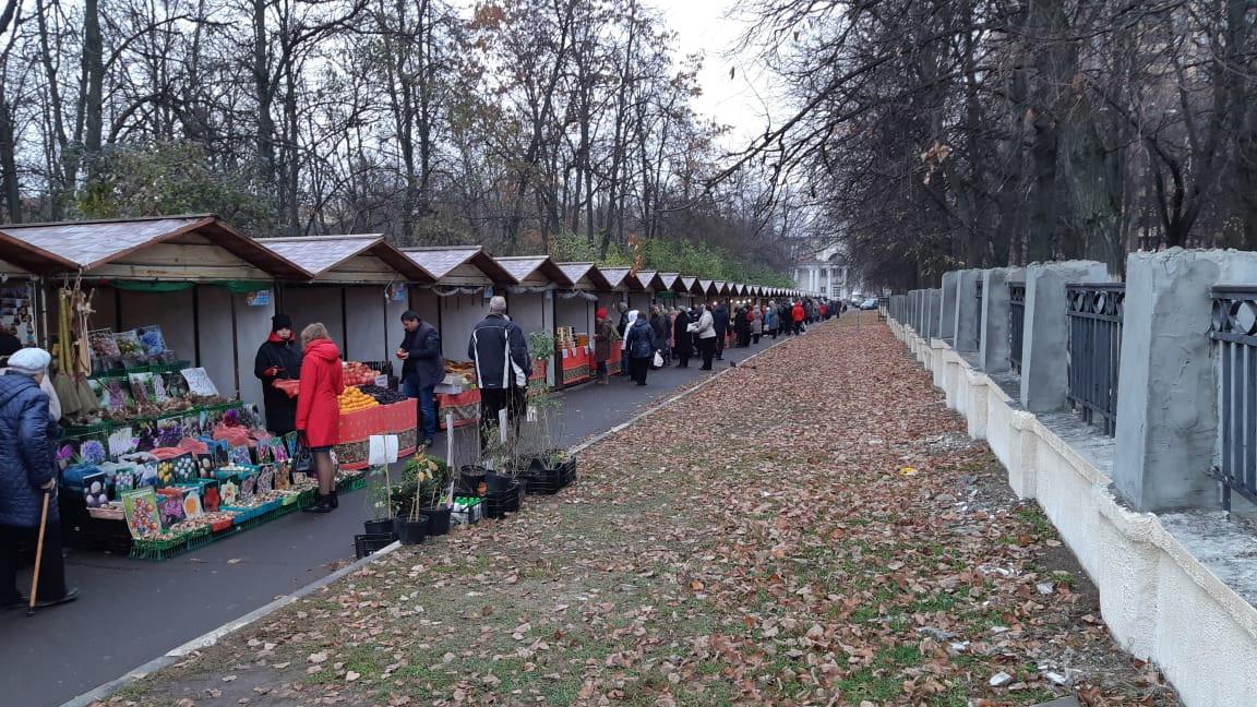 Свыше 100 тысяч человек посетили ярмарки «Ценопад» в Московской области с начала года
