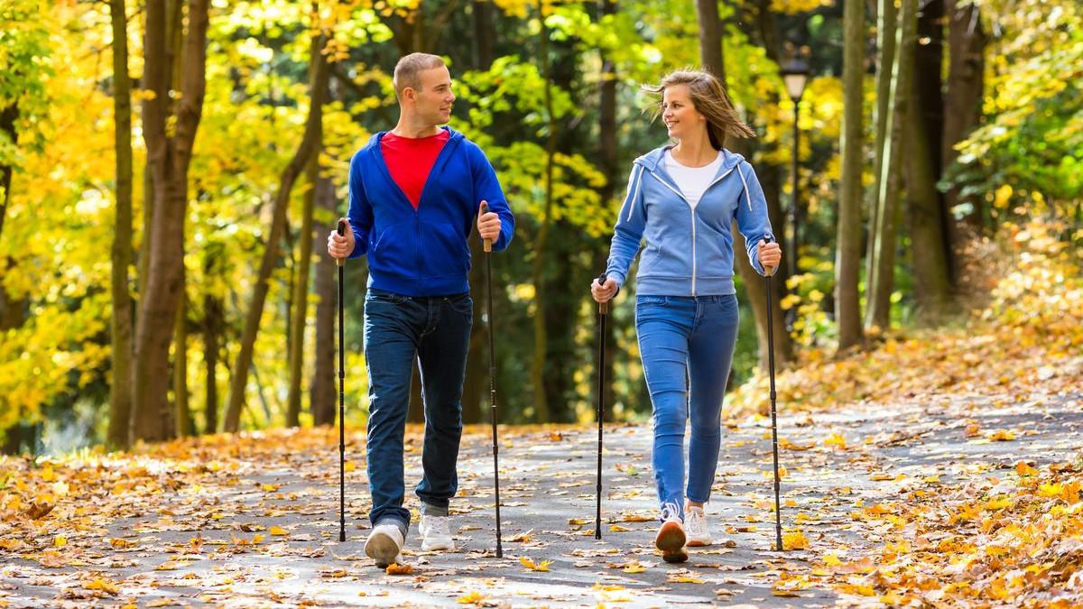 Тренеры-инструкторы обсудят методику скандинавской ходьбы в Рузе