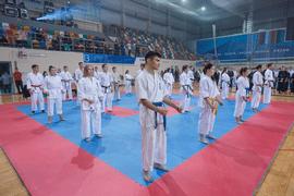 В Казани в рамках федерального проекта «Спорт – норма жизни» прошёл Первый студенческий фестиваль боевых искусств