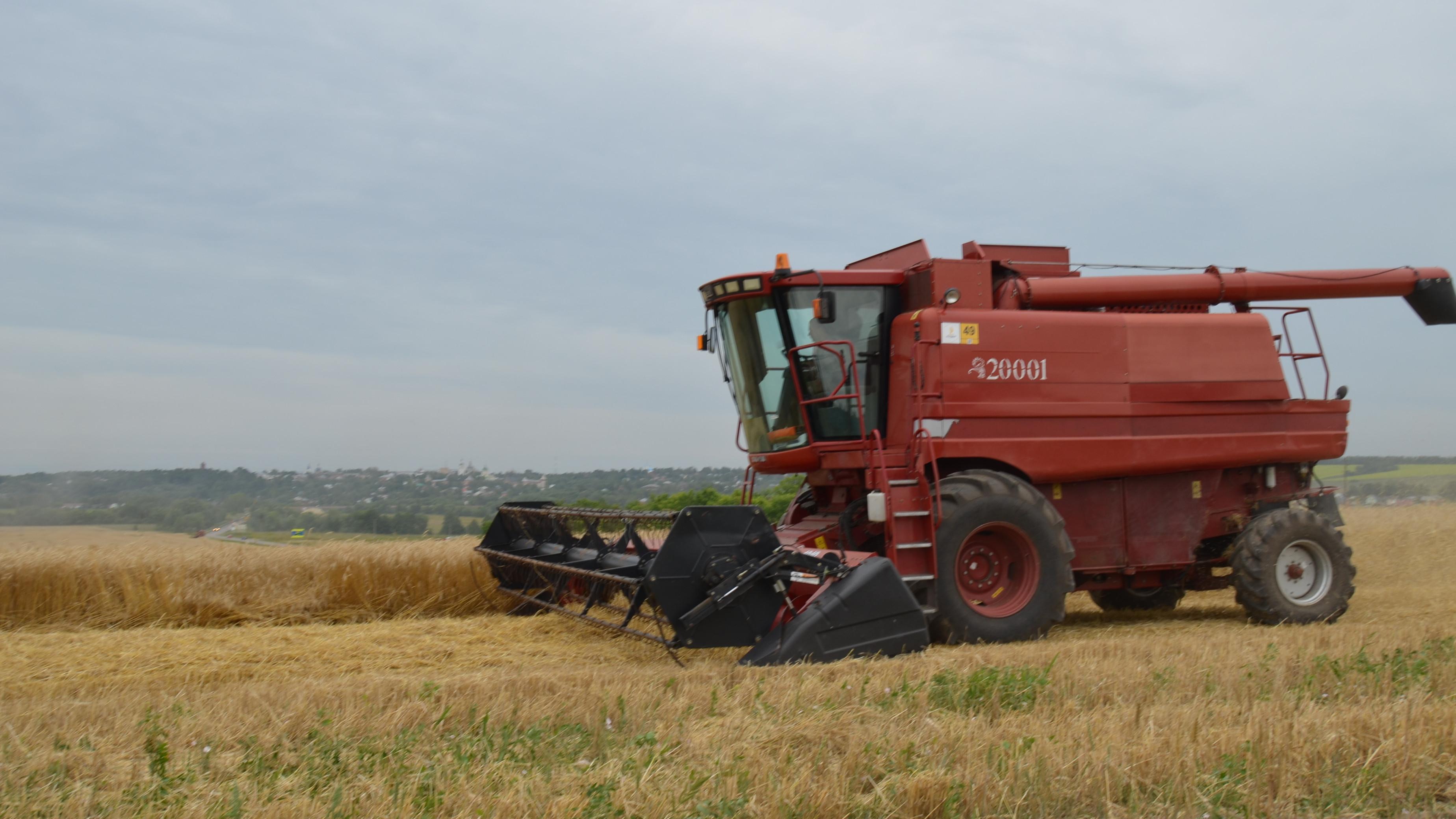 В Подмосковье завершается уборочная кампания зерновых, зернобобовых и масличных культур