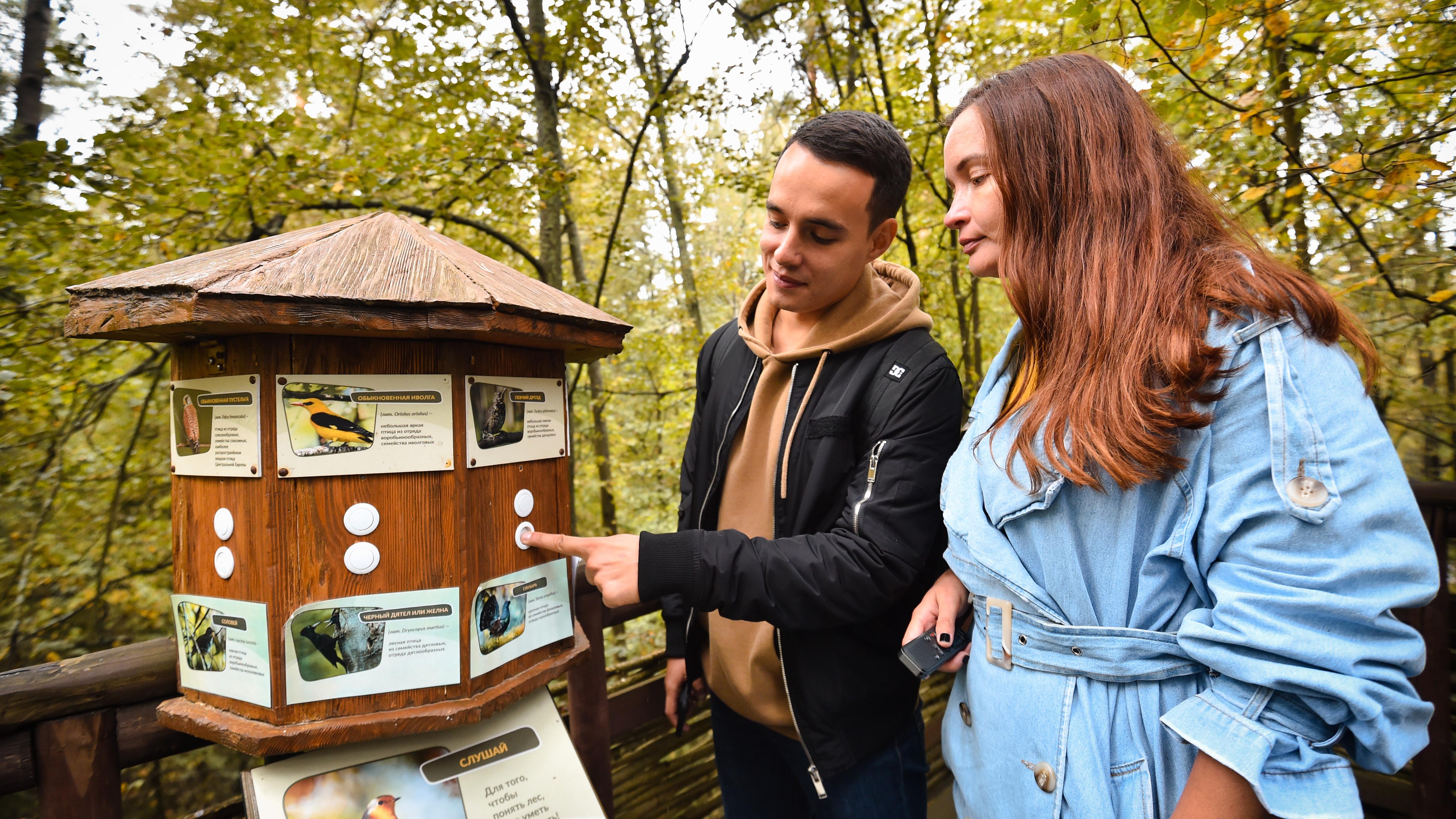 Великаны леса: подкаст «Путь-дорога» рассказывает о жизни зубров в Подмосковье