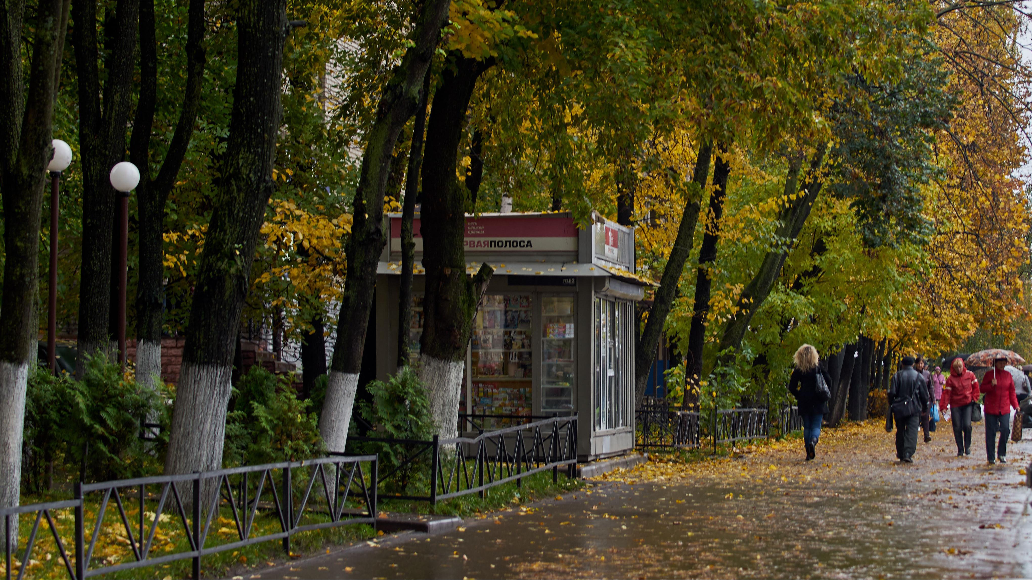 Жителям Московской области рассказали о местах для осеннего отдыха