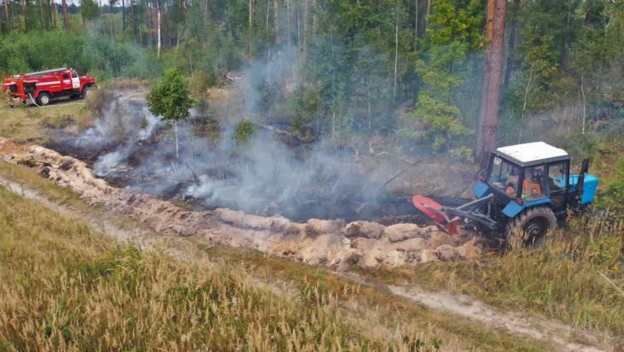 Более 200 лесных пожаров потушили в Подмосковье за сезон