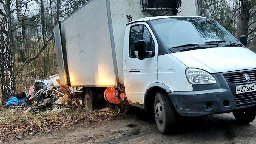 Четыре случая складирования мусора зафиксировали в лесах Подмосковья