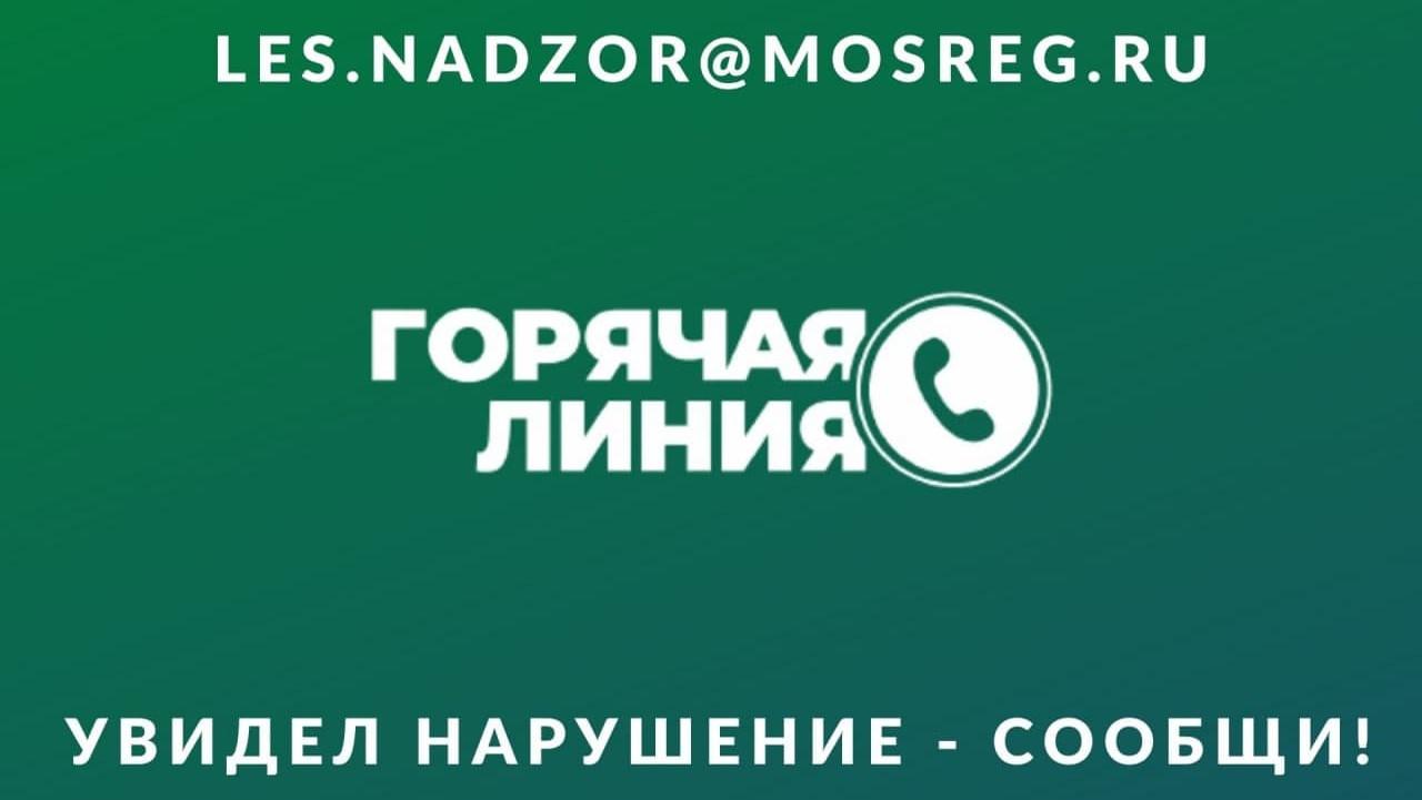 Горячую линию для предотвращения свалок на землях лесного фонда запустили в Подмосковье