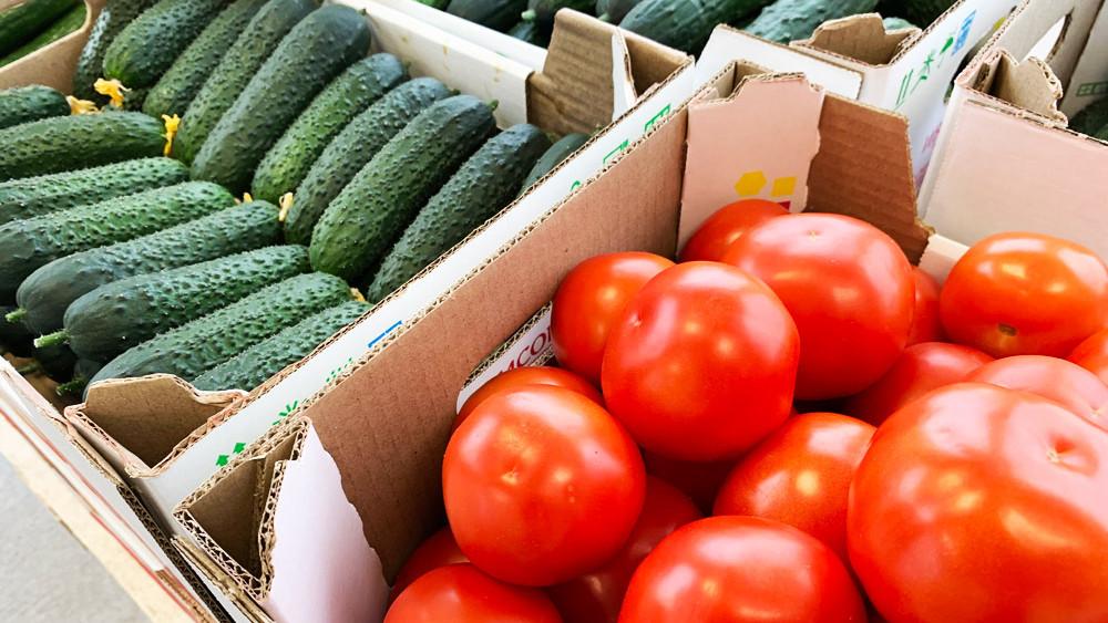 Электростальский агрокомплекс увеличил объемы поставки овощей в Прибалтику