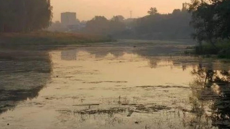 Реабилитация загрязненной реки Петрицы в Подольске