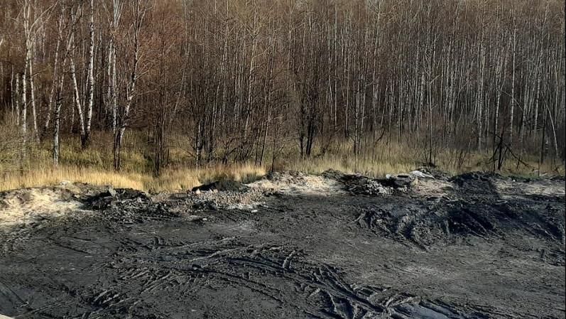 Минэкологии Подмосковья потребовало привести в порядок земли в Богородском городском округе