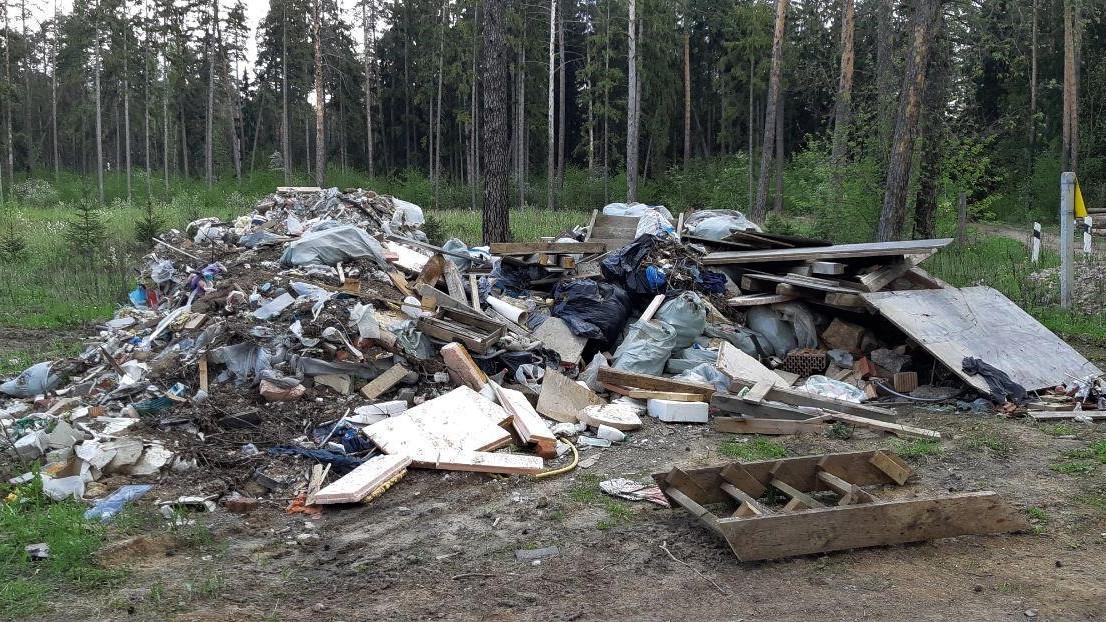 Незаконная свалка мусора в лесу