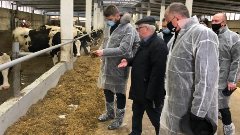 Реконструированную молочную ферму запустили в Пушкинском округе