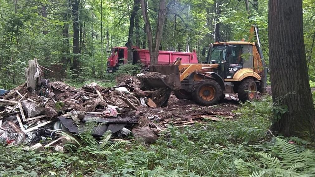 Свыше 20 тысяч кубометров мусора вывезли из лесов Подмосковья в 2020 году