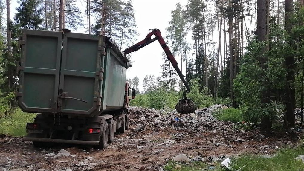 Уборка мусора в лесах Московской области проводится без выходных