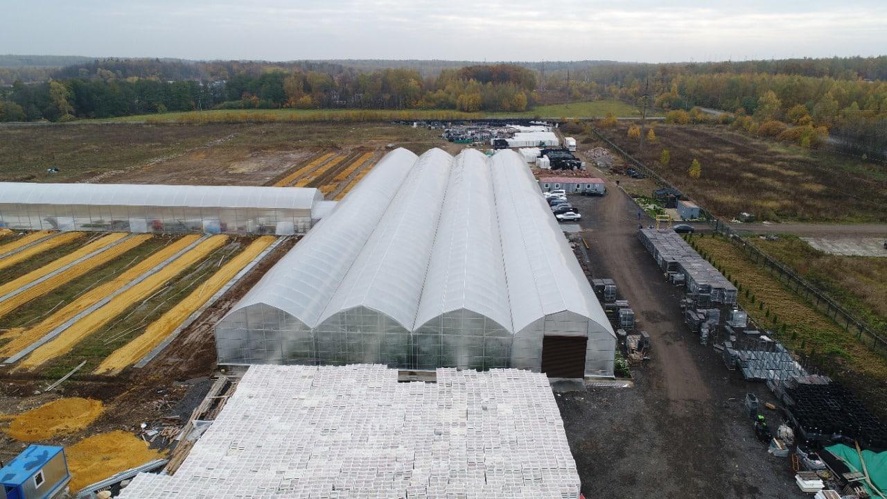 Более 10 млн цветов в год будут выращивать в новом тепличном комплексев Раменском