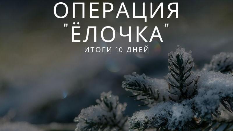 Десять фактов незаконной рубки елей выявили в Подмосковье