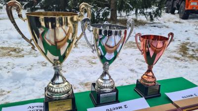 Имена победителей конкурса «Лучшее участковое лесничество» объявили в Подмосковье