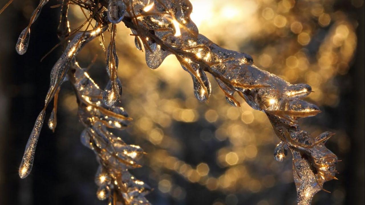 Ледяной дождь может пройти в новогоднюю ночь в Подмосковье