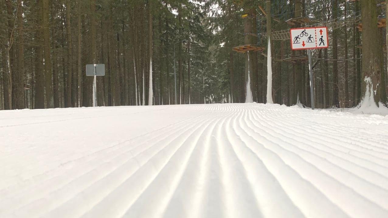 Лыжную трассу длиной 2,5 км открыли в Одинцовском парке культуры